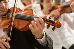 Orchestra string section performing stock photos