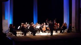 Orchestre de chambre de quatre saisons banque de vidéos