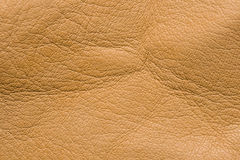 Orchi leather. Expressive lighting several lamps stresses volume royalty free stock photos