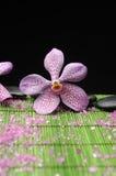 Orchidée avec le ston de zen image stock