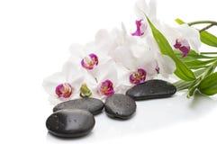Orchidée blanche de station thermale avec des pierres de massage sur le blanc photographie stock libre de droits