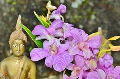 Orchidée blanche et pourpre sur le fond des statues de Bouddha Image libre de droits