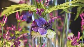 Orchidée bleue, chrysanthème et fougère d'arrangemen floraux Images stock