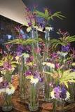 Orchidée bleue d'arrangemen floraux, chrysanthème, clématite, fougère Image libre de droits