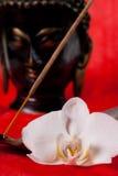 Orchidée, Bouddha et incence Photos libres de droits