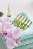 orchidée de beautys d'ampoules Image libre de droits
