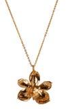 Orchidée en or Images libres de droits