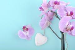Orchidée et coeur blanc en bois Image stock