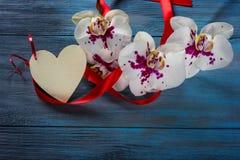 Orchidée et coeur blancs de branche Photographie stock libre de droits