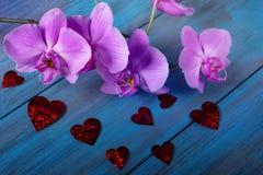Orchidée et coeurs pourpres Photo libre de droits