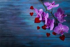 Orchidée et coeurs pourpres Photos stock