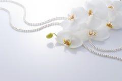Orchidée et perles blanches photos stock
