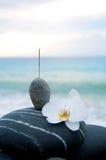 Orchidée et pierre Photo libre de droits