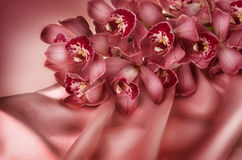 Orchidée et soie Photo libre de droits