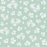 Orchidée florale répétant le modèle sans couture sur le fond vert-bleu - dirigez l'illustration Image stock