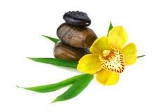 Orchidée jaune avec des pierres de zen d'isolement sur le blanc Photographie stock