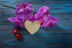 Orchidée pourpre et deux coeurs Photos libres de droits