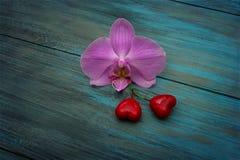 Orchidée pourpre et deux coeurs Photo libre de droits