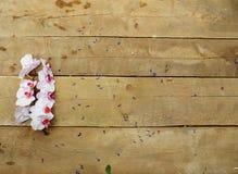 Orchidée rose sur le fond en bois Image stock