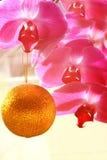Orchidées et décoration roses Photographie stock
