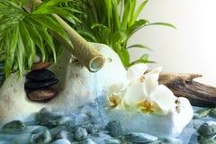 Orchidées et pierres de zen avec de l'eau en baisse Photo libre de droits
