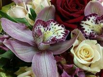 Orchidées roses dans le beau bouqette Image libre de droits