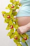 orchid έγκυος γυναίκα Στοκ φωτογραφία με δικαίωμα ελεύθερης χρήσης
