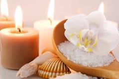 orchid κεριών αλατισμένη θάλασ&sigm Στοκ Φωτογραφία