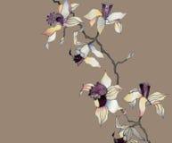 orchid κλάδων ελεύθερη απεικόνιση δικαιώματος