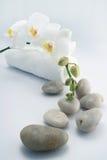 orchid λευκό πετσετών πετρών Στοκ Φωτογραφίες