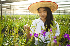 Orchid And Girl Stock Image