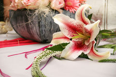 Orchid arrangement. Pink orchids royalty free stock photo