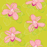 Orchid background. Seamless pattern with pink orchids on yellow background Stock Image