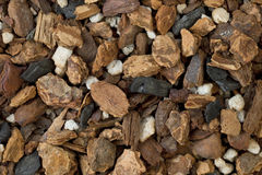 Orchid bark mix Royalty Free Stock Image