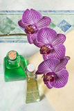 Orchid in the bathroom Royalty Free Stock Images