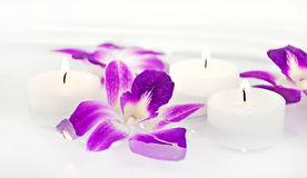 Orchid blooms and candle in water Stock Photos