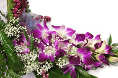 Orchid bouquet Stock Image