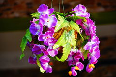 An orchid bouquet. Purple colour of an orchid bouquet hung on the shore Royalty Free Stock Image