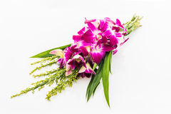 Orchid Bouquet on white Stock Images