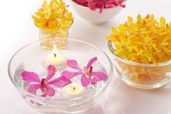 Orchid in bowl and candle Stock Image