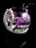 Orchid branch. The branch of an orchid and pearls is in a glass vase Stock Photo