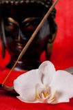Orchid, Buddha and incence. Relaxation tools, with a Buddhist statue Royalty Free Stock Photos