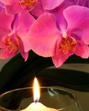 Orchid by Candle Light Royalty Free Stock Photos