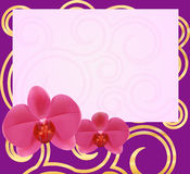 Orchid card 1-1 Stock Images