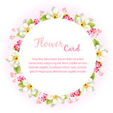 Orchid card Stock Image