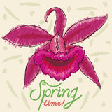 Orchid Colored with Markers in Sketch Style for Springtime, Vector Illustration stock images