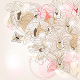 Orchid composition Stock Photography