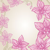 Orchid Decorative Border Stock Photography