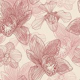 Orchid engraving seamless pattern Royalty Free Stock Image