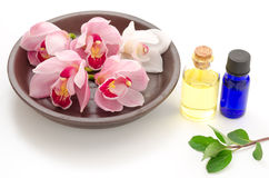 Orchid and essential oil Stock Image